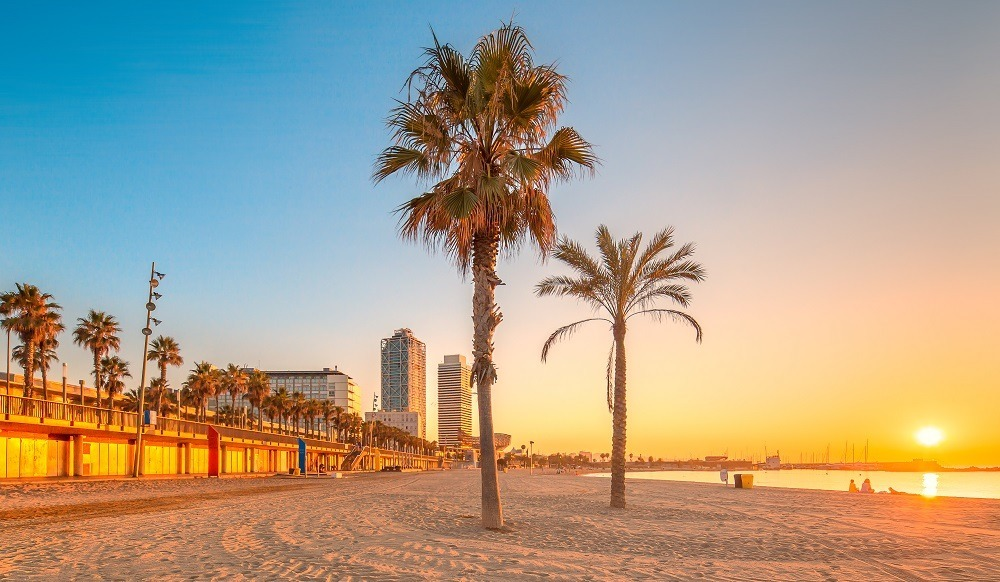 playa barceloneta barcelona distrito ciutat vella