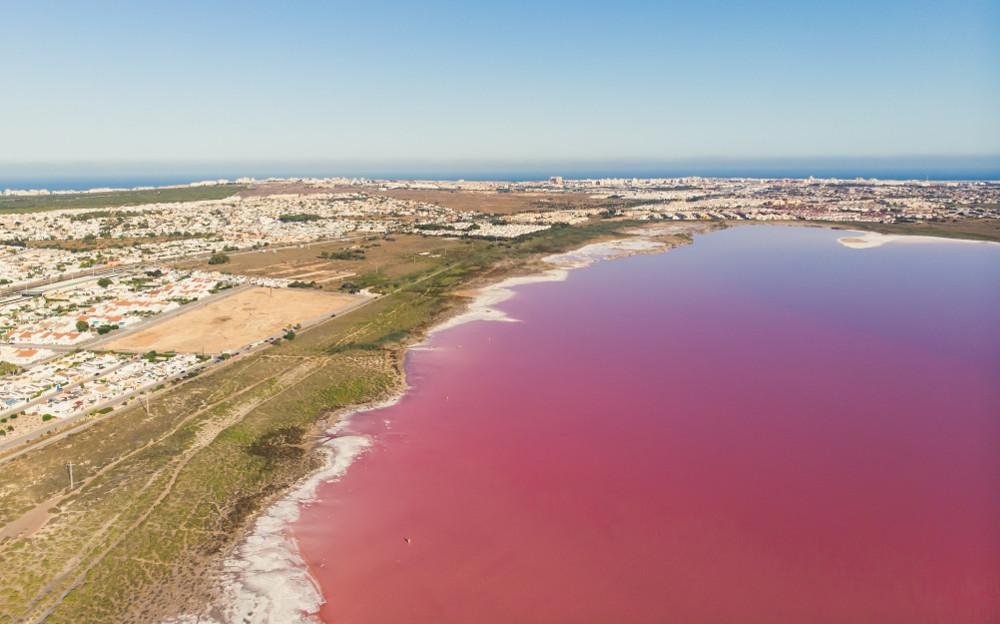 laguna rosa torrevieja