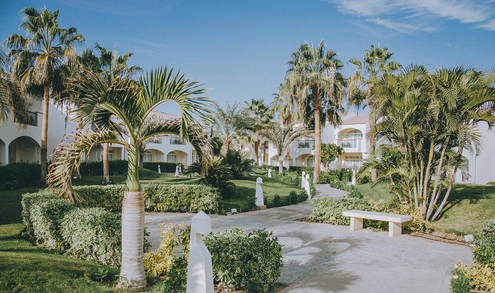 consejos a la hora de comprar una casa nueva jardin