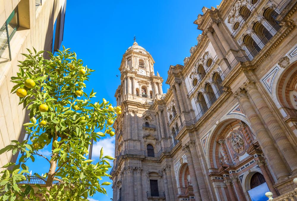 mejores zonas vivir en málaga catedral
