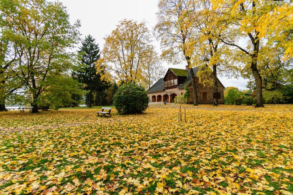casa con jardín en otoño